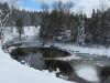 Manistee River, Deward Area, 23 January 2016